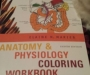 Anatomy and phsiology coloring book